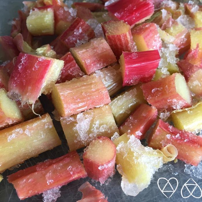 PAP frozen rhubarb