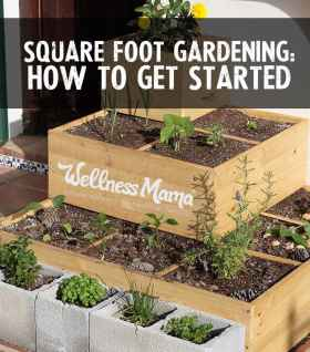 Square-foot-raised-bed-gardening-how-to-get-started